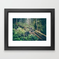 Colour Jungle Framed Art Print
