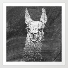 Black White Vintage Funny Llama Animal Art Drawing Art Print