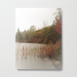 Deer Lake Decrescendo Metal Print