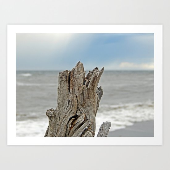 Looking past the Driftwood Art Print
