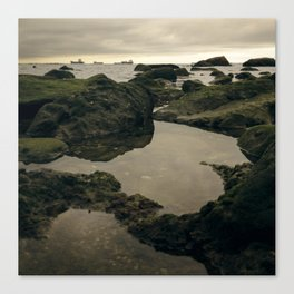 Rocky Shore and the Sea 01 Canvas Print