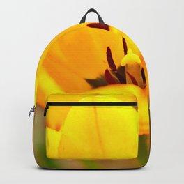 Golden Chalice Backpack