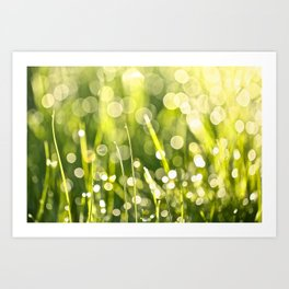 One Summer Morning Art Print
