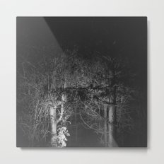 Dark Pine Wood Metal Print