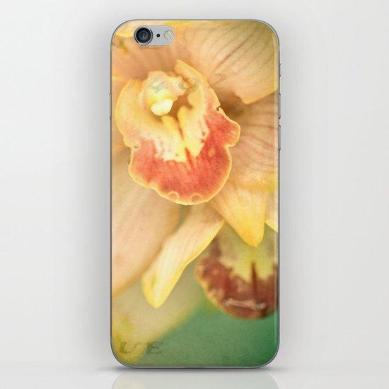 Sweet Lorraine iPhone & iPod Skin