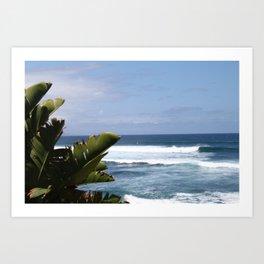 Ho'okipa Beach Art Print