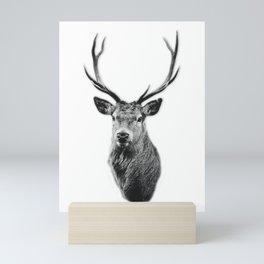 Stag Mini Art Print