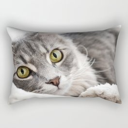 Cat lying with wide eyes open Rectangular Pillow