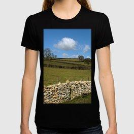 A Winter Wall (inc. wraparound Tshirt) T-shirt