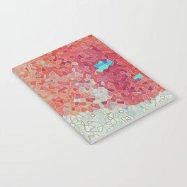 Blue Island Notebook