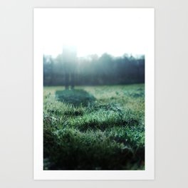 If I Were the Frost... Art Print