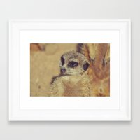 scarface Framed Art Prints featuring the Scarface by LindaMarieAnson