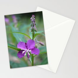 Pretty Fireweed Stationery Cards
