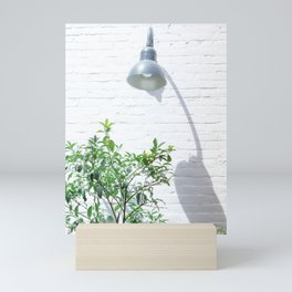 Street photography lamp & tree II Mini Art Print