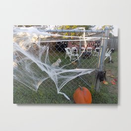Spiderweb Pup Metal Print