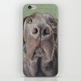 Brown Dog iPhone Skin