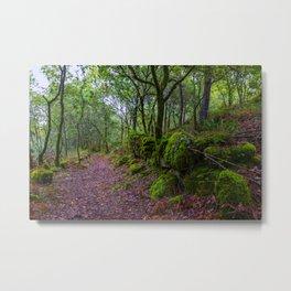 The road to nature Metal Print