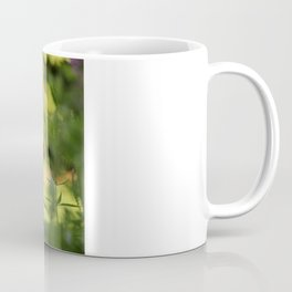 Focus Coffee Mug