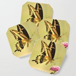 Giant Swallowtail Coaster