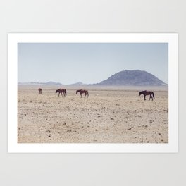 Horses of Namibia Art Print