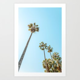 Tropical Palm Trees, Palm Tree Leaf, California Dream, Miami Beach, Summer Travel, Beach Photography, Pastel Colors, Looking Up To The Sky Art Print