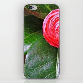 Camellia Bud iPhone Skin