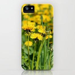 Die Löwenschar iPhone Case
