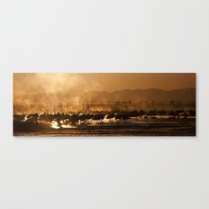 Sandhill Cranes Waking in the Morning Mist Canvas Print