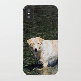Mongolian Dog iPhone Case