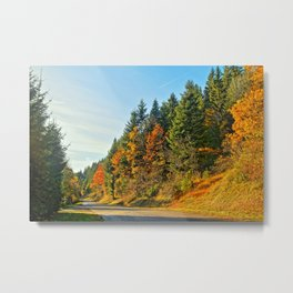 Autumn road with colored tree in France Metal Print
