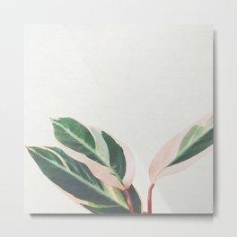 Pink Leaves III Metal Print