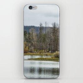 Snake River near Cattleman's Bridge Site -  Grand Tetons iPhone Skin