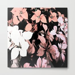 Pink and Black Poinsettia Christmas Holiday Flowers Metal Print