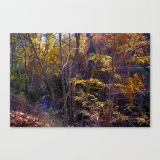 Walking by the river Canvas Print