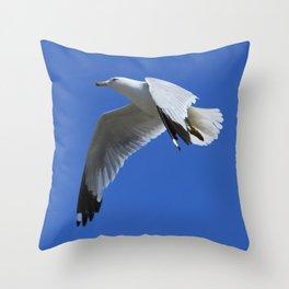 Ring-Billed Gull in Flight Throw Pillow
