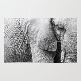 Elephant Wrinkles Rug