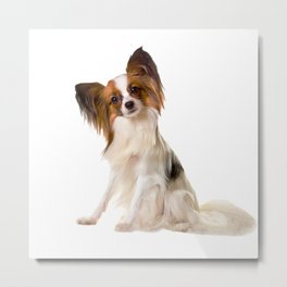 Papillon Puppy interrogative Metal Print
