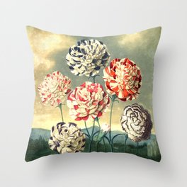 Carnations : New Illustration Of The Sexual System Throw Pillow