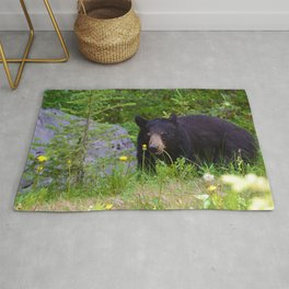 Black bear munches on some dandelions in Jasper National Park Rug