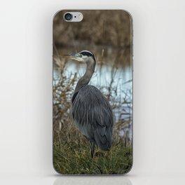 Ridgefield Heron, No. 1 iPhone Skin