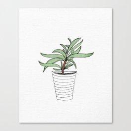 Botanic Canvas Print