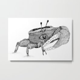 The Fiddler (Crab) Metal Print