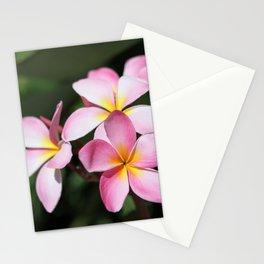 Hawaiian Flower Stationery Cards