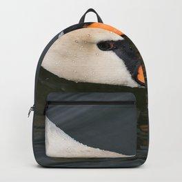 Mute Swan in Winter - Neck Skimming Backpack