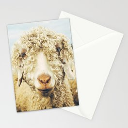 Curly I Stationery Cards