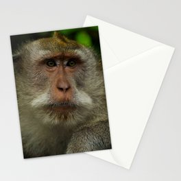 Monkey at the Ubud Monkey Forest Stationery Cards