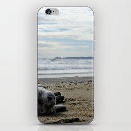 Sealpup iPhone Skin