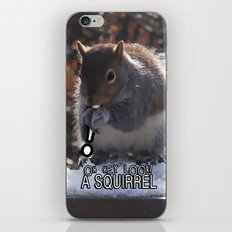 Oh Hey Look, A Squirrel! iPhone & iPod Skin
