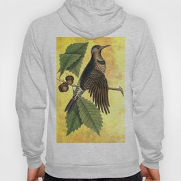 Northern Flicker with Oak, Vintage Natural History and Botanical Collage Hoody