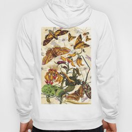 Insect Life Hoody
